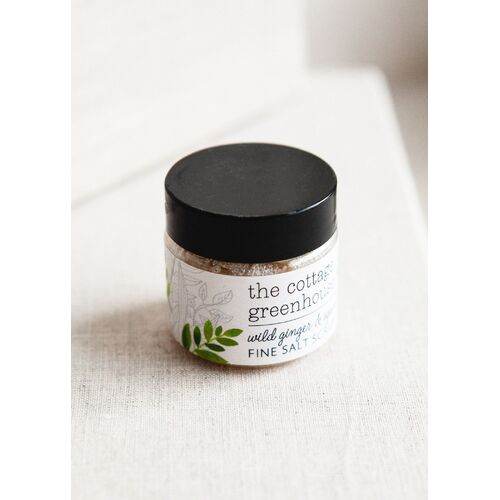 Wild Ginger & Agave - Mini Fine Salt Scrub
