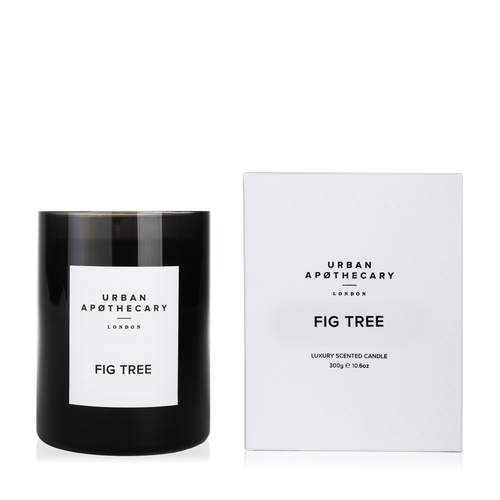 Fig Tree - Large Boxed Candle